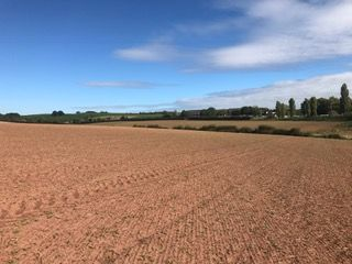 Thumbnail Land for sale in Ross On Wye, Herefordshire