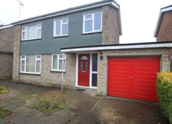 Thumbnail 3 bed detached house to rent in St Christopher Road, Colchester, Essex