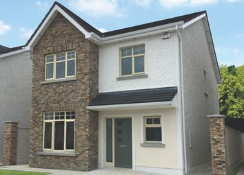 Thumbnail 4 bed detached house for sale in Monasterevin