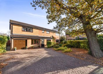 Thumbnail 4 bed detached house for sale in The Copse, Ilkeston