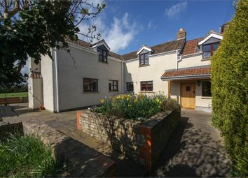 Thumbnail 4 bed detached house for sale in Spencers Cottage, Quab Lane, Wedmore, Somerset