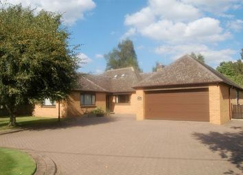 Thumbnail 3 bed detached bungalow for sale in Hartwell Road, Roade, Northampton