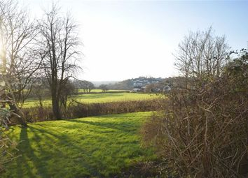 Thumbnail 2 bed flat to rent in Hunters Wood, Torrington, Devon