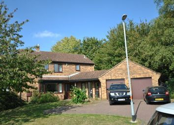 Thumbnail 4 bed property to rent in Edgemont Road, Northampton