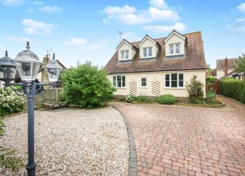 Thumbnail 4 bed detached bungalow for sale in Fingringhoe Road, Langenhoe