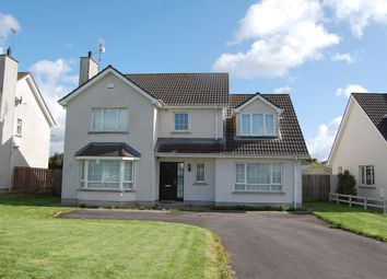 Thumbnail 4 bed detached house for sale in 90 Rathmount, Blackrock, Louth
