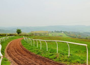Thumbnail 4 bed equestrian property for sale in Stoodleigh, Tiverton