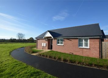 Thumbnail 2 bed detached bungalow for sale in Vineton Place, Feniton, Honiton, Devon