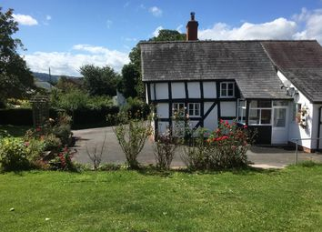 Thumbnail 3 bed cottage for sale in Staunton-On-Wye, Hereford