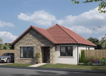 Thumbnail 4 bed detached bungalow for sale in The Avenue, Lochgelly, Fife