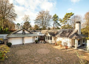 4 bed detached bungalow for sale in Higher Broad Oak Road, West Hill, Ottery St. Mary, Devon EX11
