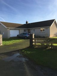 Thumbnail 4 bed detached house to rent in Hill Crescent, Houghton, Milford Haven