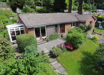 Thumbnail 5 bedroom detached bungalow for sale in Wilton Park Road, Hawick