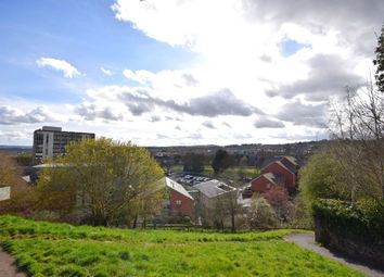 Thumbnail 2 bed flat for sale in Bartholomew Street West, Exeter