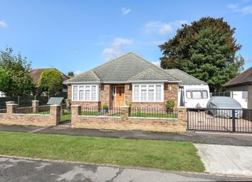 Thumbnail 4 bed detached bungalow for sale in Westfield, Old Woking