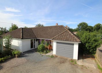 Thumbnail 3 bed detached bungalow for sale in Llanfihangel Talyllyn, Brecon