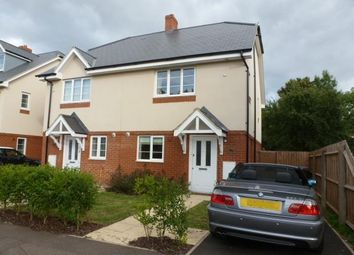 Thumbnail 3 bed semi-detached house to rent in Clarkes Road, Hatfield
