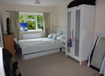 Thumbnail Detached house to rent in Studio, Fox Lane, Winchester, Hampshire