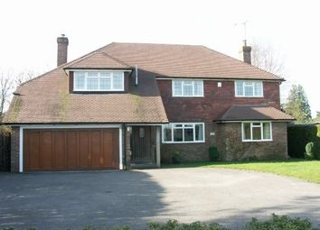 Thumbnail 4 bed property to rent in London Road, Crowborough