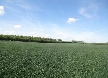 Thumbnail Land for sale in New Cut Road, Chilham, Canterbury