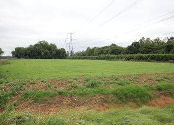 Thumbnail Land for sale in Great Hadham Road, Much Hadham