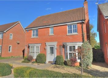Thumbnail 4 bed detached house to rent in The Cains, Norwich