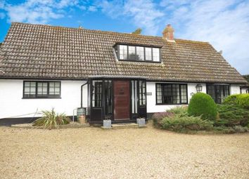 Thumbnail 3 bed property to rent in North Walsham Road, Knapton, North Walsham