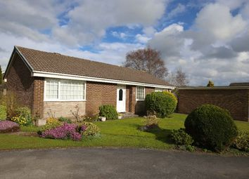 Thumbnail 3 bed bungalow for sale in New Acres, Carnforth