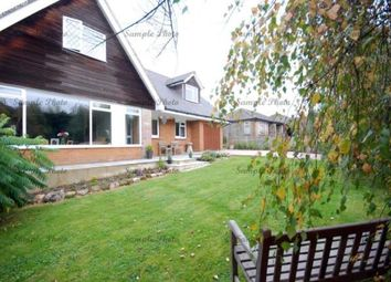 Thumbnail 5 bed bungalow for sale in Havenstreet, Ryde, Isle Of Wight