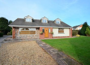 Thumbnail 4 bed bungalow for sale in Manor Vale Road, Galmpton, Brixham