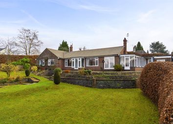 Thumbnail 3 bed bungalow to rent in Woodhouse Lane, Holmbury St. Mary, Dorking, Surrey