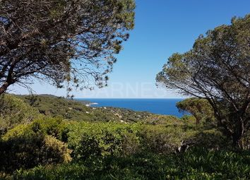 Thumbnail 2 bed property for sale in 83350 Ramatuelle, France