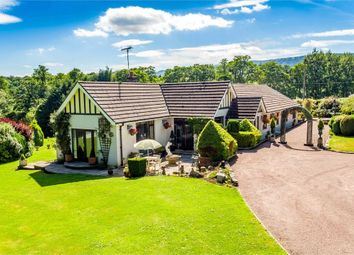 Thumbnail 6 bed detached house for sale in Nantyderry, Abergavenny, Monmouthshire