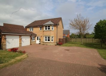 Thumbnail 4 bed detached house for sale in Welsh Court, Denny