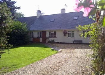 Thumbnail 4 bedroom semi-detached bungalow to rent in St John's Road, Exmouth, Devon.
