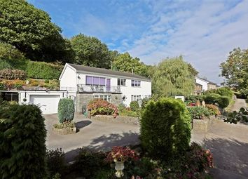 Thumbnail 4 bed bungalow for sale in Dehewydd Lane, Llantwit Fardre, Pontypridd