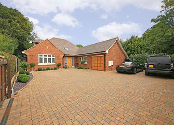 Thumbnail 4 bed detached bungalow to rent in The Pathway, Radlett