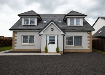 Thumbnail 4 bed detached house to rent in Longforgan, Dundee