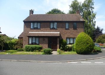 Thumbnail 4 bed property to rent in Symonds Avenue, Ormesby, Great Yarmouth
