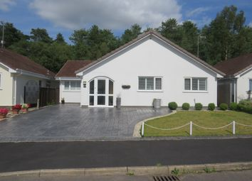 Thumbnail 2 bed detached bungalow for sale in The Chase, Verwood
