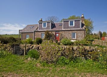 Thumbnail 5 bed detached house for sale in St. Cyrus, Montrose