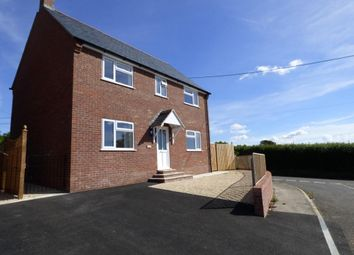 Thumbnail 4 bed detached house to rent in Hill View, Bishops Caundle, Sherborne, Dorset
