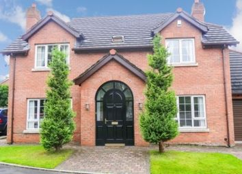 Thumbnail 4 bed detached house to rent in Carnreagh Mews, Hillsborough
