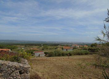 Thumbnail Land for sale in Serra Do Bouro, Costa De Prata, Portugal
