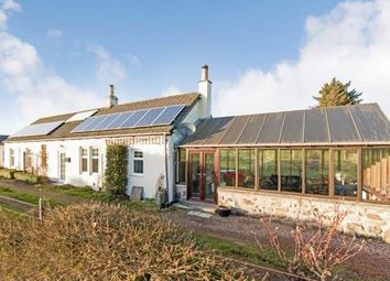 Thumbnail 2 bed detached house for sale in Cluny, Kirkcaldy, Fife, Scotland