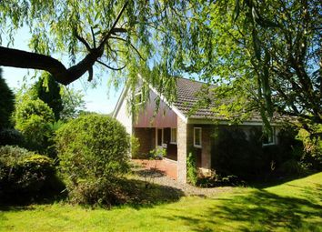 Thumbnail 3 bed bungalow for sale in 7, Armit Place, St Andrews, Fife