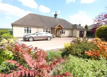 Thumbnail 4 bed detached bungalow for sale in Liverpool Road West, Church Lawton, Stoke-On-Trent
