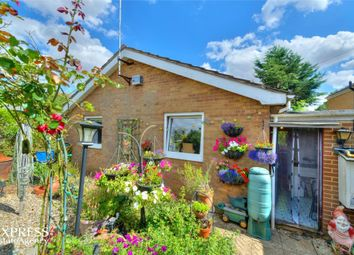 Thumbnail 3 bed detached bungalow for sale in Harrington Road, Rothwell, Kettering, Northamptonshire