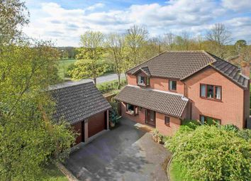 Thumbnail 4 bed detached house for sale in Great Mead, Denmead, Waterlooville