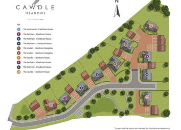 Thumbnail 4 bed detached house for sale in Cawdle Meadows, Little Thetford, Ely